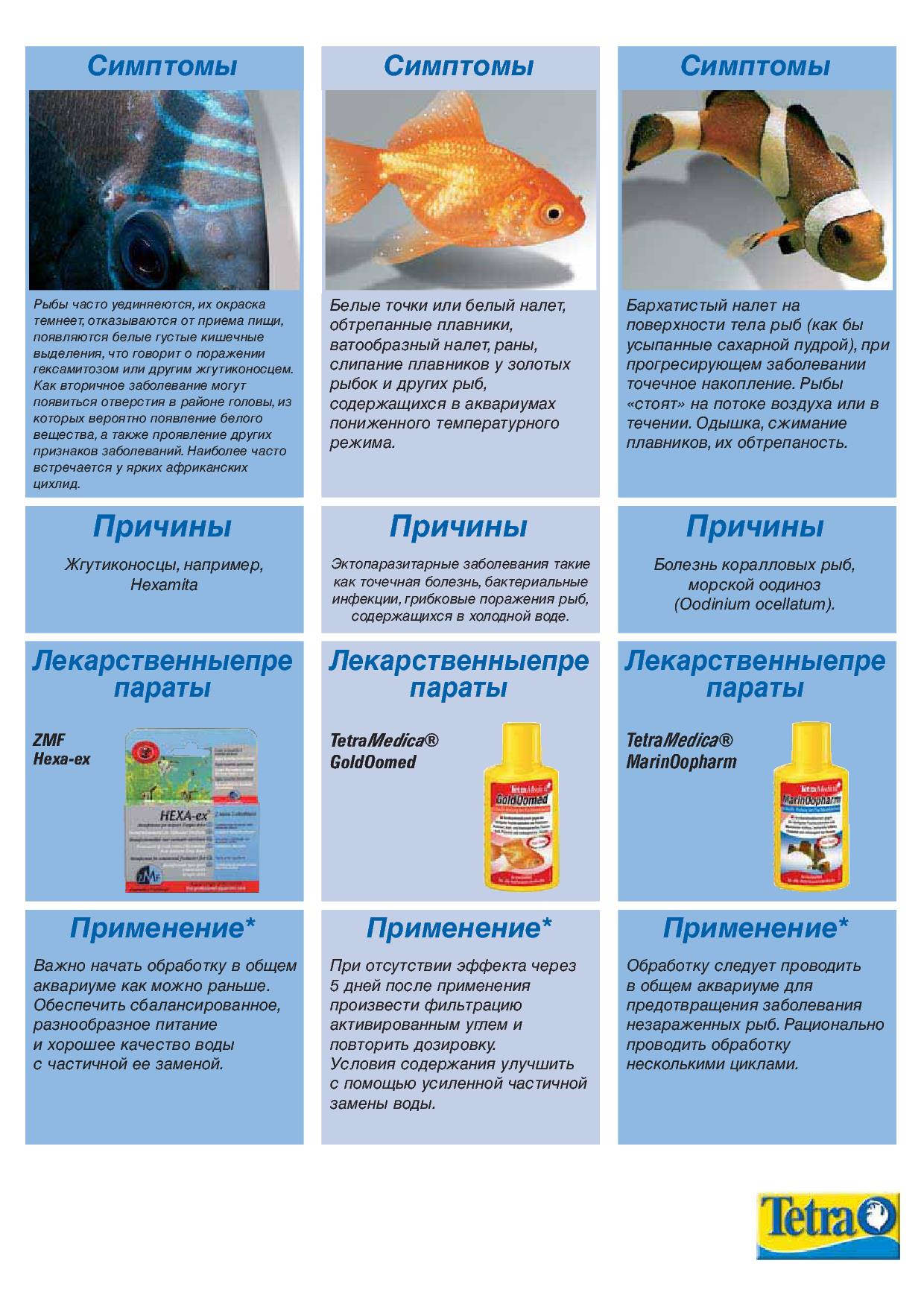 нитраты лекарственные препараты механизм действия