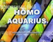 видео по акваруимистике