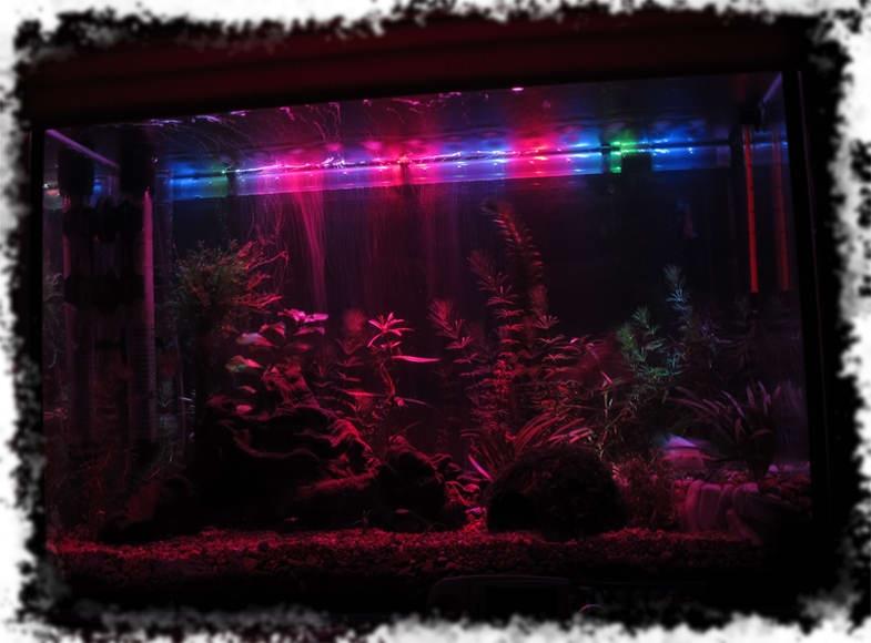 Led лампы для аквариума своими руками 14