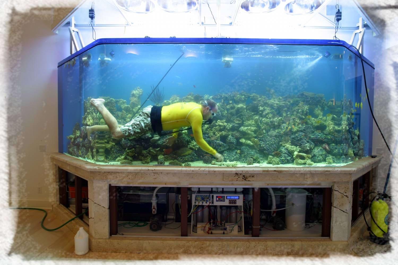 Своими руками маленький аквариум