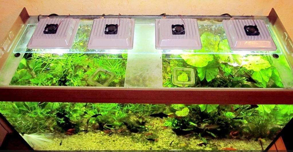 Аквариум освещение для растений своими руками 96