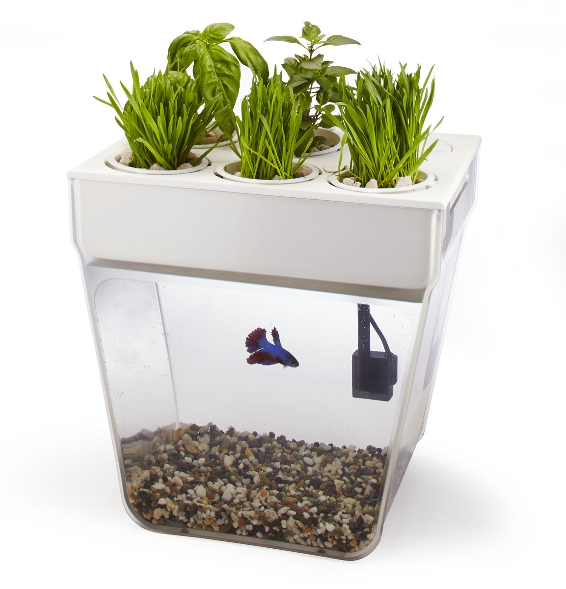 Горшок по выращиванию растений