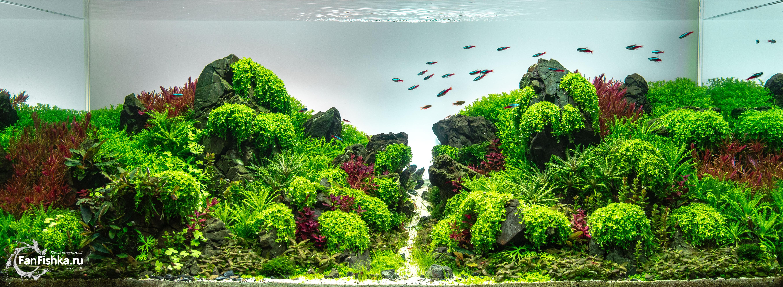 Акваскейп 2isles.jpg