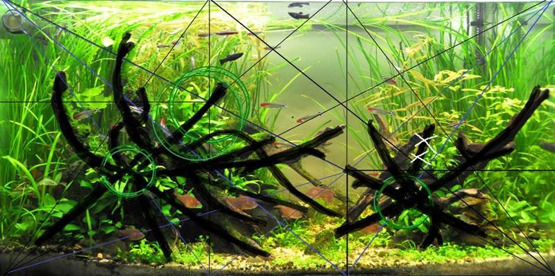 Декор аквариума своими руками с фото