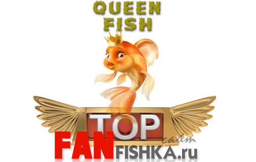 Разновидности аквариумных рыбок с названиями экзотическая красота