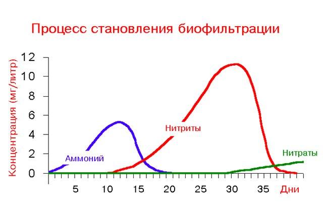 таблица роста концентрации нитритов и нитатов в аквариуме