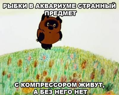 s7327186.jpg