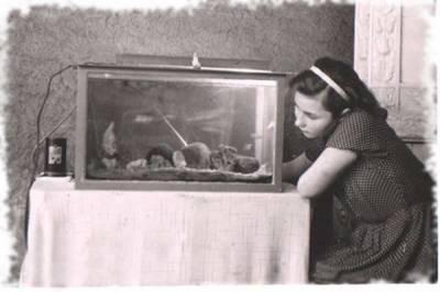 Ретро аквариумистика