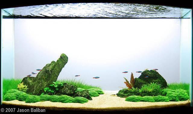 Как сделать песок в аквариуме 979