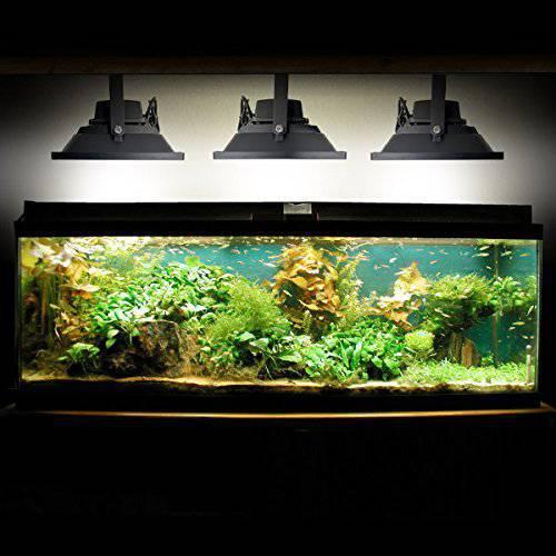 прожектора над аквариумом.jpg