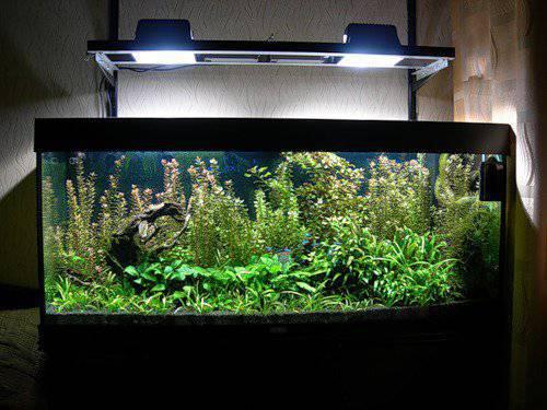 прожектора над аквариумом 2.jpg