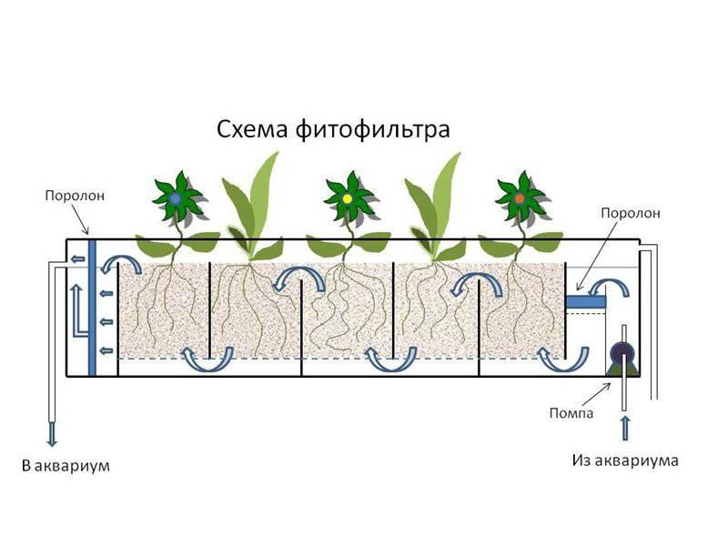Создание фитофильтра для аквариума - Page 7 - Уход и оформление аквариума, полезные советы - Форум FanFishka.ru