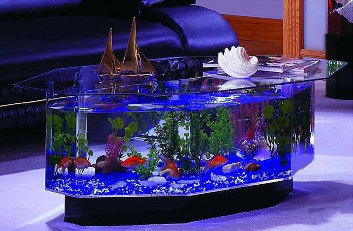 Сделай сам декорации для аквариума