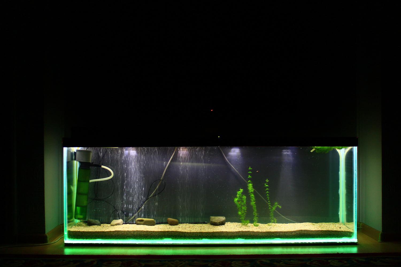 Инструкции изготовление аквариума своими руками