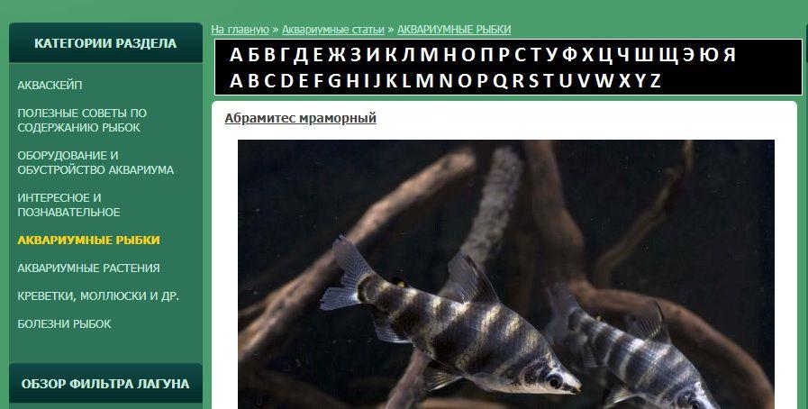 alphabet.jpg.7f06065e7f85f31a95d20f6391f77ee7.jpg