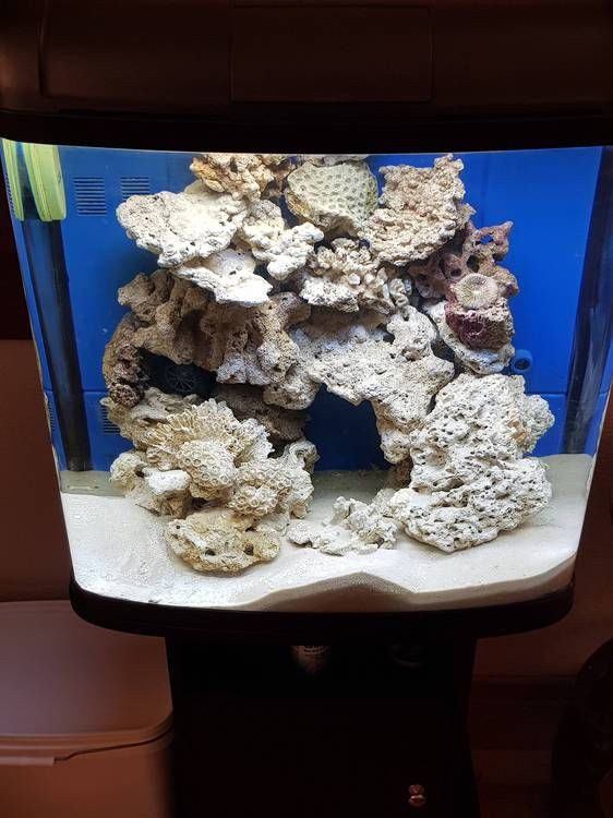 Запуск морского аквариума 90 литров Resun-DMS-500