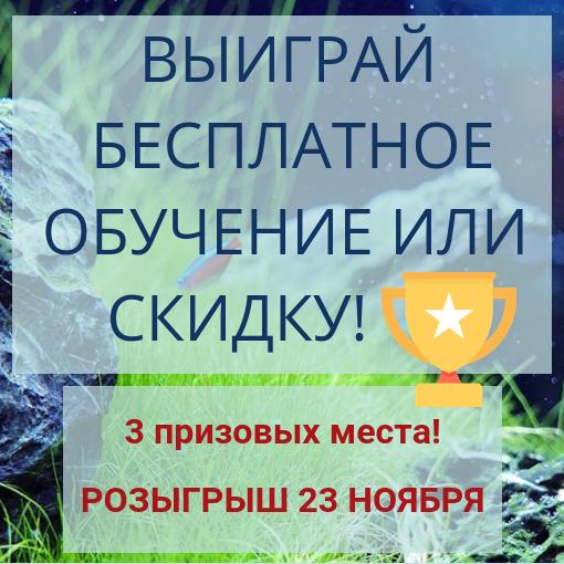 Добавить МЫ подзаголовок (3).png