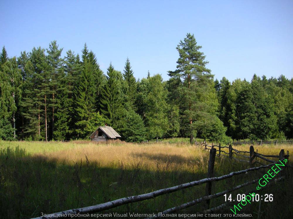 Баня в лесу.jpg
