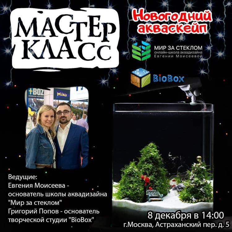 IMG-20181130-WA0008.jpg