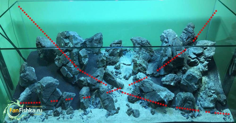 золотое сечение аквариум фанфишка