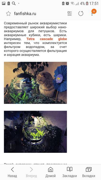 Screenshot_20190317-175125_Samsung Internet.jpg