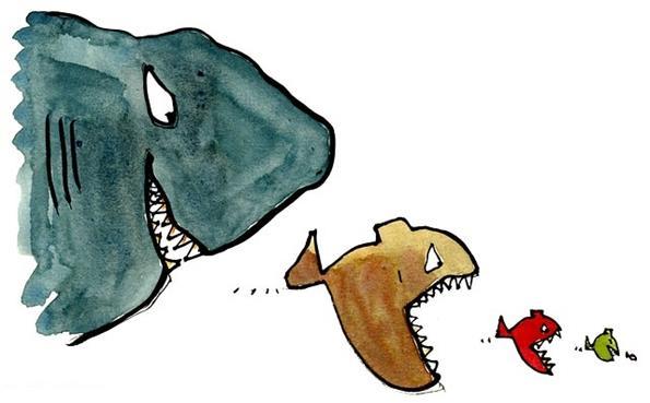 Агрессивные рыбки