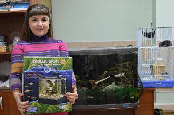 Аквариум Aqua Box Betta: обзор и отзывы
