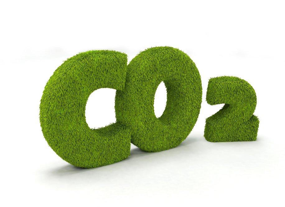 Все об СО2 для аквариума