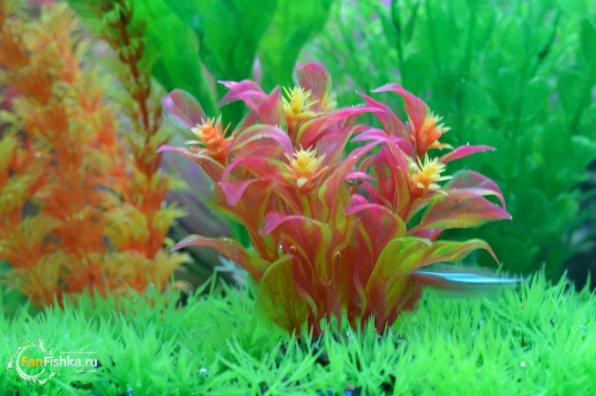 Искусственные коряги для аквариума