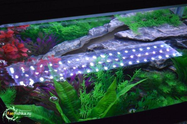 Лучшие искусственные декорации для аквариума