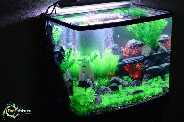 Искусственные аквариумные растения дизайн