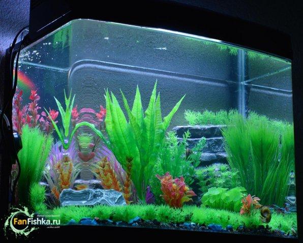 Искусственные декорации для аквариума