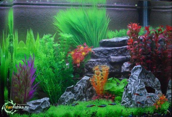 Лучшие искусственные растениядля аквариума
