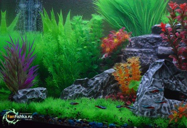 Искусственные растения для аквариума фото