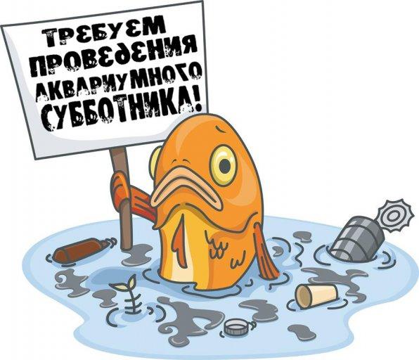 уборка в аквариуме