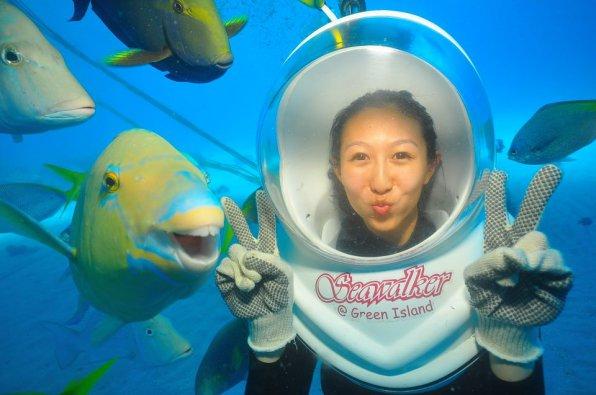 Огромная видео-подборка аквариумного юмора и приколов!