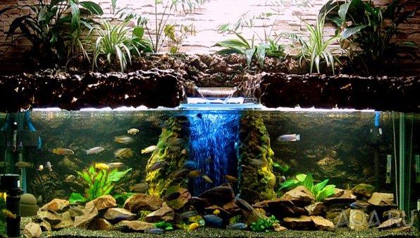 Внутренний фильтр красивое декорирование аквариума