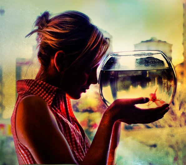 Маленький круглый аквариум уход