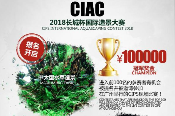 CIPS International Aquascaping Contest 2018