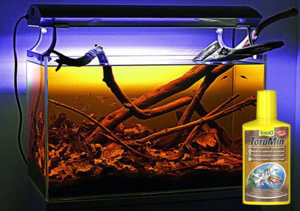 Аквариум для нанохромисов