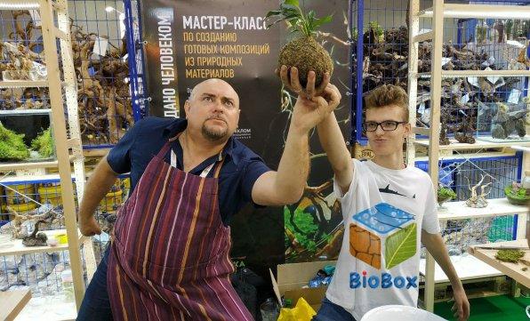 аквариум BioBox!