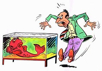 Лечение аквариумных рыб от паразитов