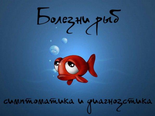болезни рыб симптомы