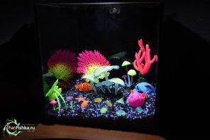Настоящий светящийся аквариум GLOXY GLOW SET