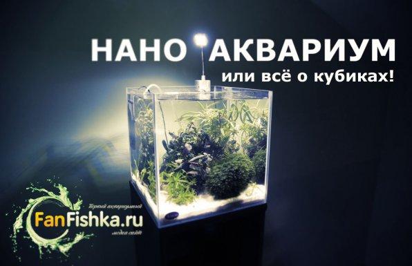 Нано аквариум или все о кубиках