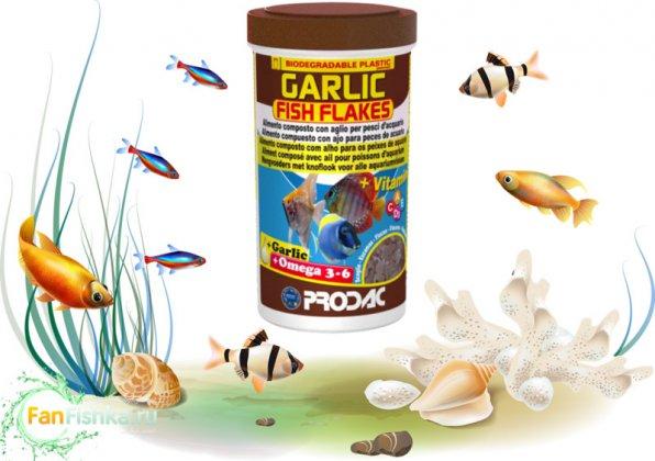 Корм для рыб с чесноком GARLIC PRODAC