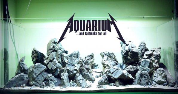 Хардскейп в аквариуме