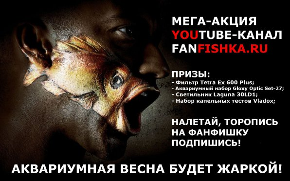 Акция конкурс YouTube Fanfishka.ru