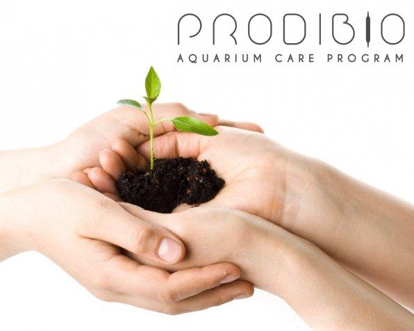 Вечные биостартеры, бессмертные удобрения и прочие добавки для аквариума!