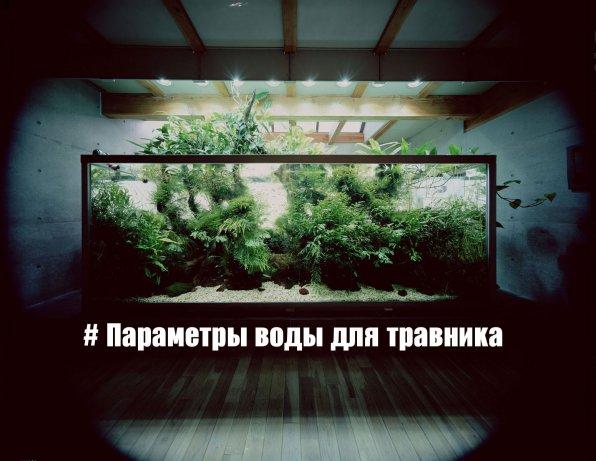 Параметры воды для аквариума с растениями